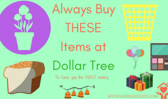 19 Things to ALWAYS buy at Dollar Tree To Save You The Most Money
