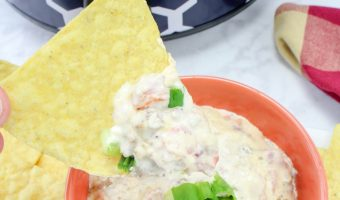 Crockpot Cheesy Sausage Dip Recipe