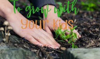 Easy Plants To Grow With Your Kids In Your Garden