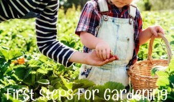 First Steps For Gardening With Your Kids