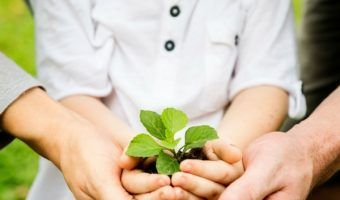 Teaching Your Kids Gardening | The Value of Gardening
