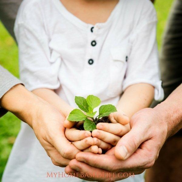 Teaching Kids to garden
