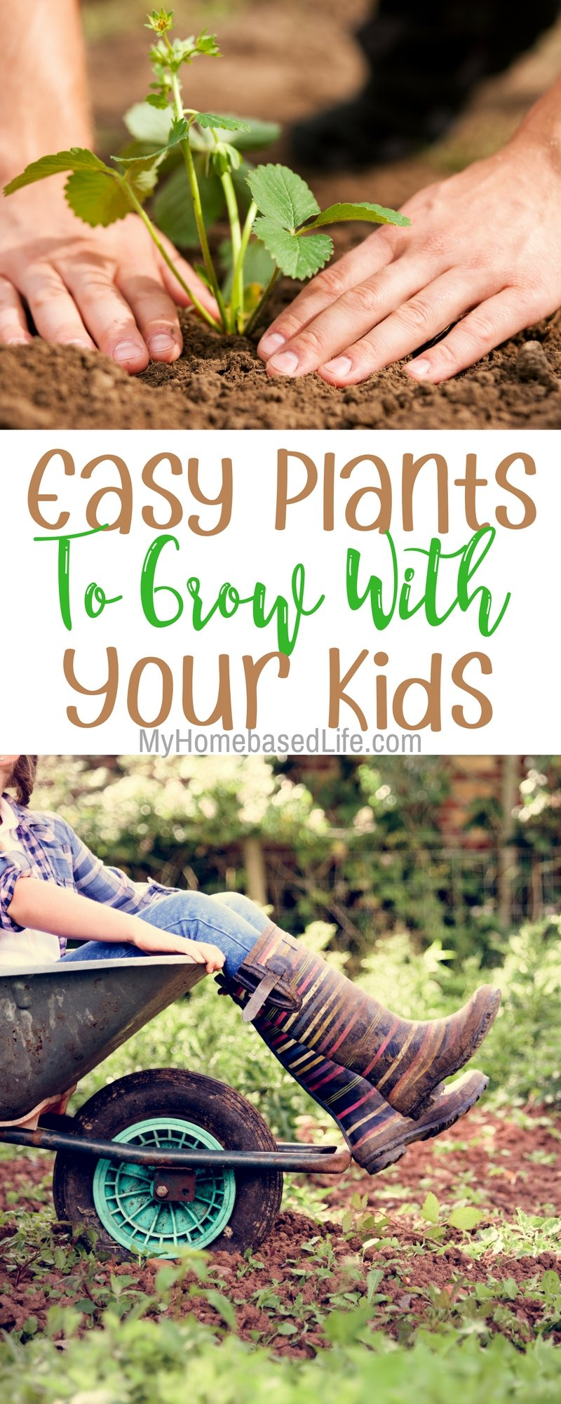 Easy Plants to grow with your kids. Start your garden with these! Gardening | #gardening | Gardening with kids | Kids Activity |
