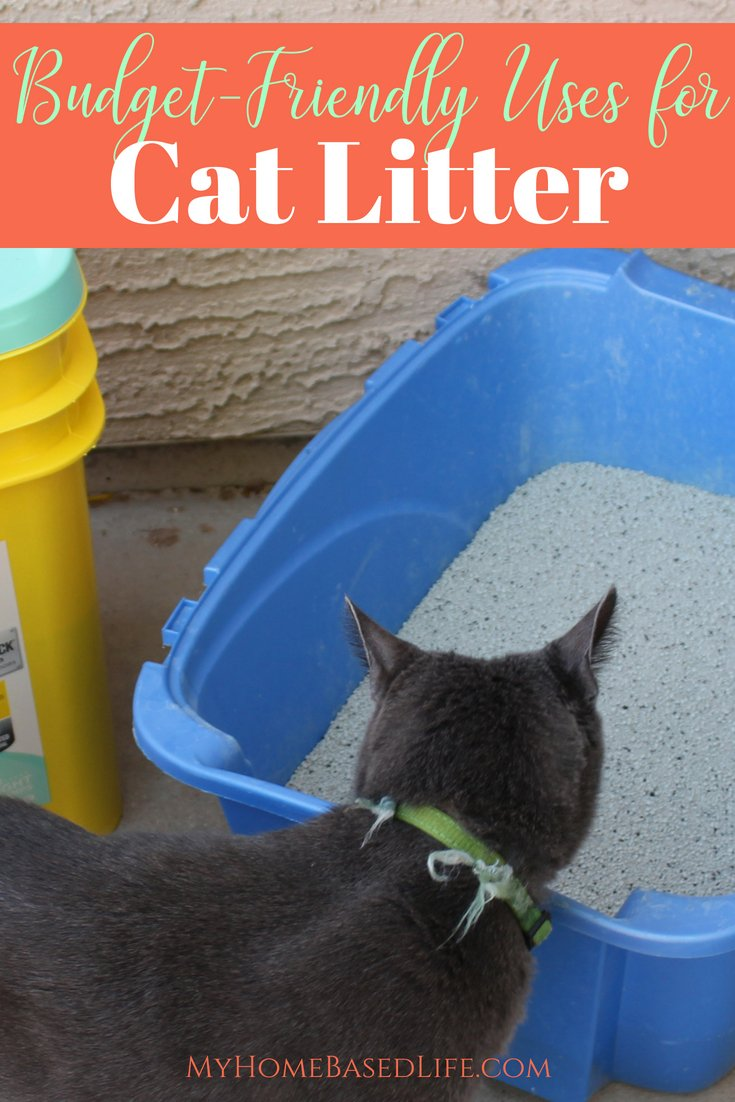 20 budget-friendly Uses for Cat Litter