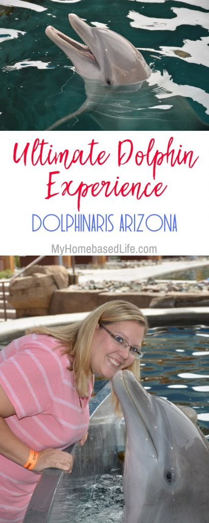 Dolphinaris, Arizona is one attraction you do not want to miss out on. A very kid-friendly atmosphere to interact with dolphins. #dolphinaris #arizona #travelarizona #kidfriendly #familyfriendly #myhomebasedlife   Arizona Travel   Interact with Dolphins   Things to Do in Arizona   Bucket List