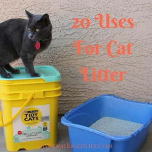 20 Uses for Cat Litter