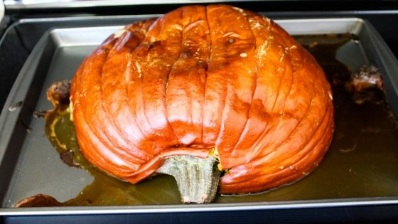 Put an end to buying pumpkin every year. Let me show you How to make your own Pumpkin Puree for all of your pumpkin recipes needs. #pumpkinrecipes #pumpkinpuree #homemade #howto #myhomebasedlife | Pumpkin Recipes | Homemade Pumpkin Puree | How to make pumpkin puree |