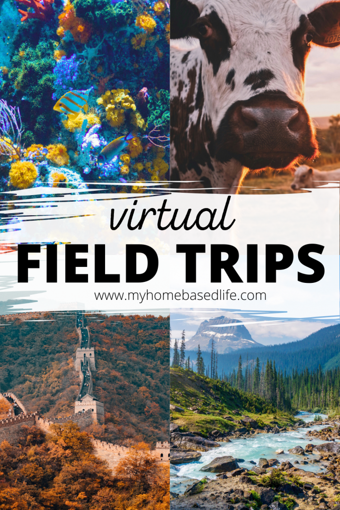 virtual field trips and adventures for kids