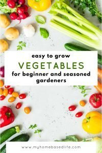 best vegetables for new gardeners