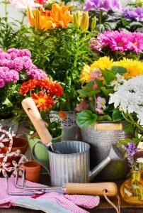 flowerbed tips