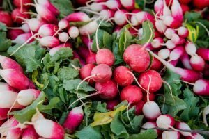 the easiest vegetables to grow - radish