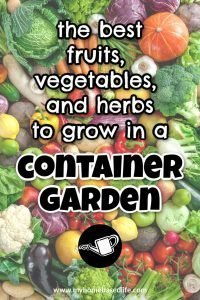 the best fruits, vegetables, and herbs to grow in a container garden